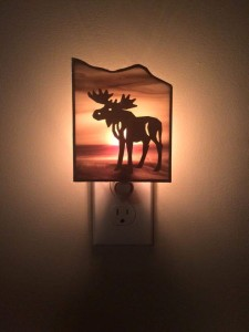 kim moose